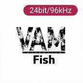 [Hi-Fi] FISH